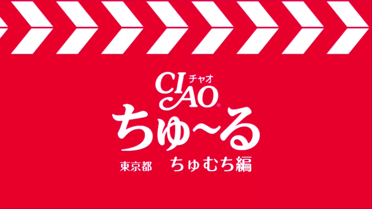 """""""あの""""有名CMに愛猫が出演!? 「ちゅーるメーカー」で動画を作ろう"""