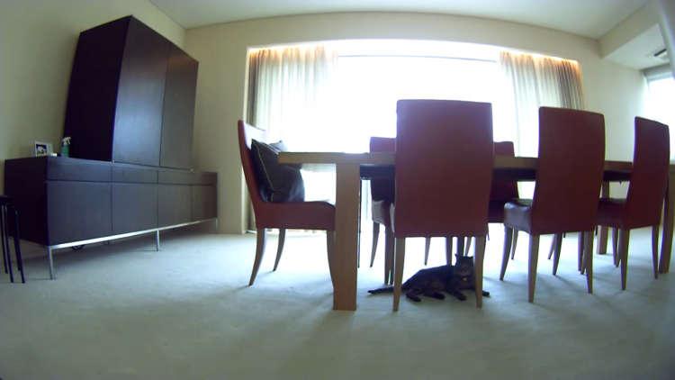 カメラに録画された部屋の様子は…