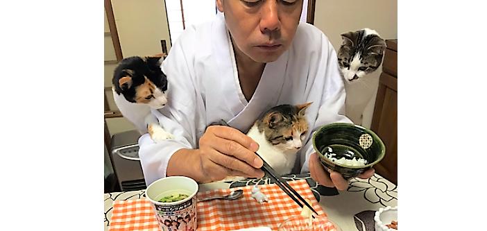 【ご飯チェックするニャ!】飼い主さんの朝食を覗きこむネコたち♪ ほほえましすぎる様子が話題に♡