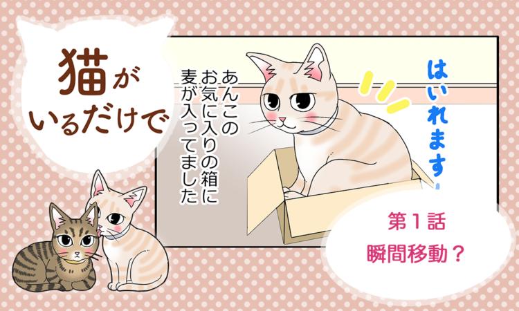 【まんが】第1話:【瞬間移動?】まんが描き下ろし連載♪ 猫がいるだけで(著者:暁龍)