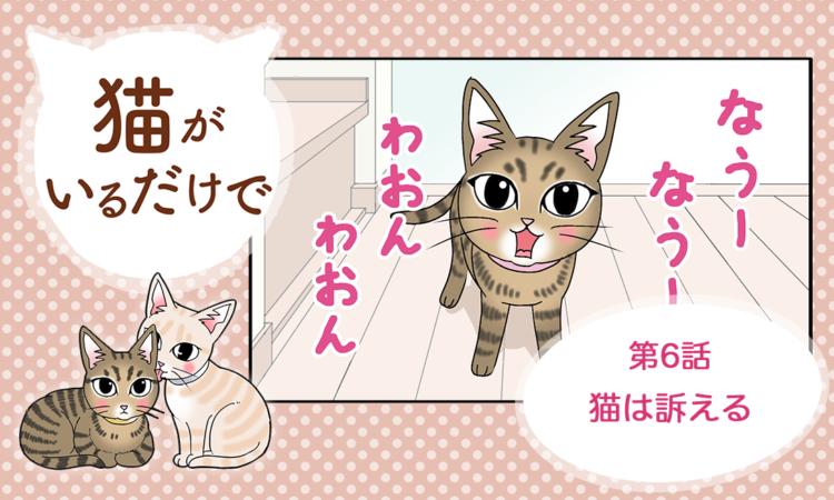 【まんが】第6話:【猫は訴える】まんが描き下ろし連載♪ 猫がいるだけで(著者:暁龍)
