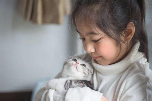 【獣医師監修】仔猫を家族に迎えたら。仔猫の育て方、その基本を解説します