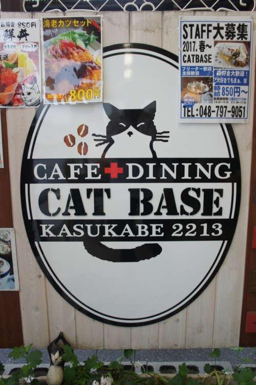café&dining CAT BASE