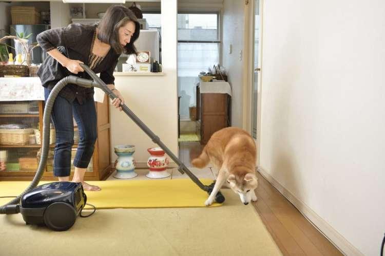 【嫌い】うるさい掃除機あっち行け!