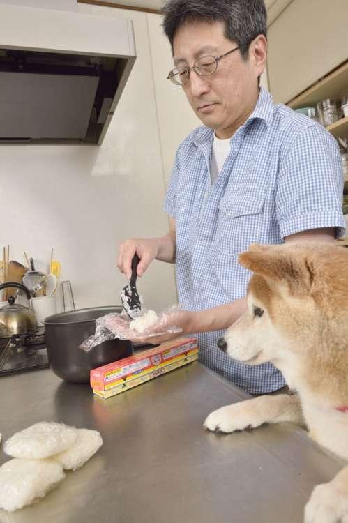 もっと多めによそいなさいよっ(怒)  夫婦共々糖質オフ中なので、犬のためだけに米を炊く我が家。熱いうちに小分けして冷凍。他にも肉や魚を茹でておかずを作る。