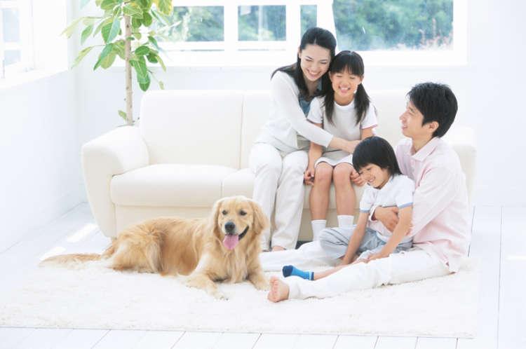 ペットを飼う上で「光熱費がかかるのは仕方ない」とあきらめていませんか…東京ガスの電気はまとめてお得!
