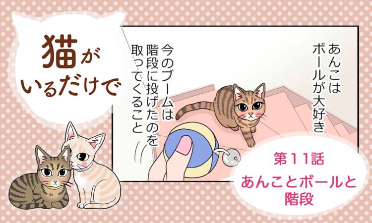 【まんが】第11話:【あんことボールと階段】まんが描き下ろし連載♪ 猫がいるだけで(著者:暁龍)