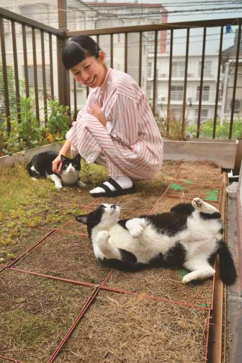 ベランダは外猫もよく見える人気のスポット。周囲は脱走防止のネットが張り巡らされている