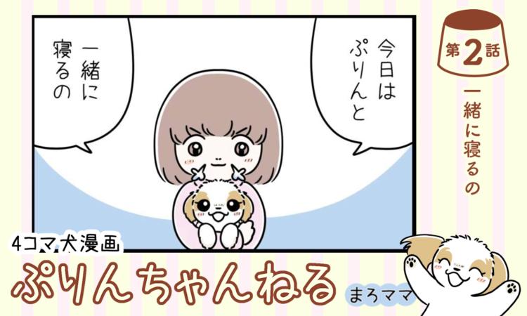 【まんが】第2話:【一緒に寝るの】描き下ろし漫画♪ 4コマ犬漫画「ぷりんちゃんねる」