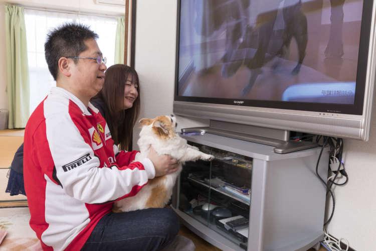 テレビに映った犬にもヤキモチ!