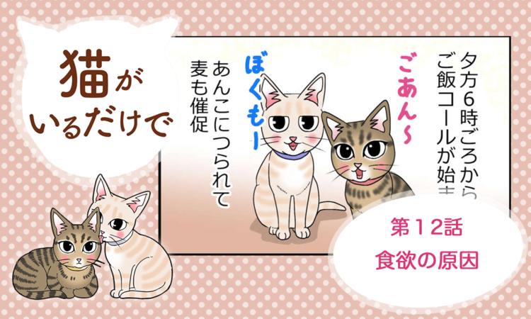 【まんが】第12話:【食欲の原因】まんが描き下ろし連載♪ 猫がいるだけで(著者:暁龍)