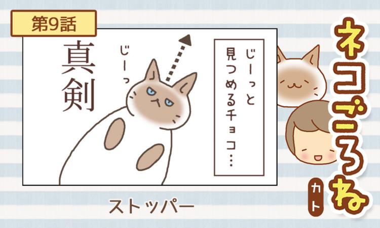 【まんが】第9話:【ストッパー】まんが描き下ろし連載♪ ネコごろね(著者:カト)