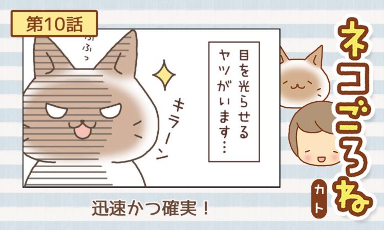 【まんが】第10話:【迅速かつ確実!】まんが描き下ろし連載♪ ネコごろね(著者:カト)