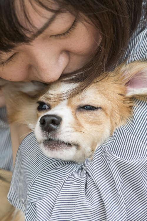 吠えている最中でも幸さんに抱きしめられると安心するのか、おとなしく身をゆだねる。日向は幸さんのことが大好き。