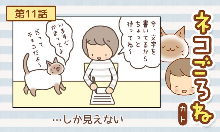 【まんが】第11話:【…しか見えない】まんが描き下ろし連載♪ ネコごろね(著者:カト)