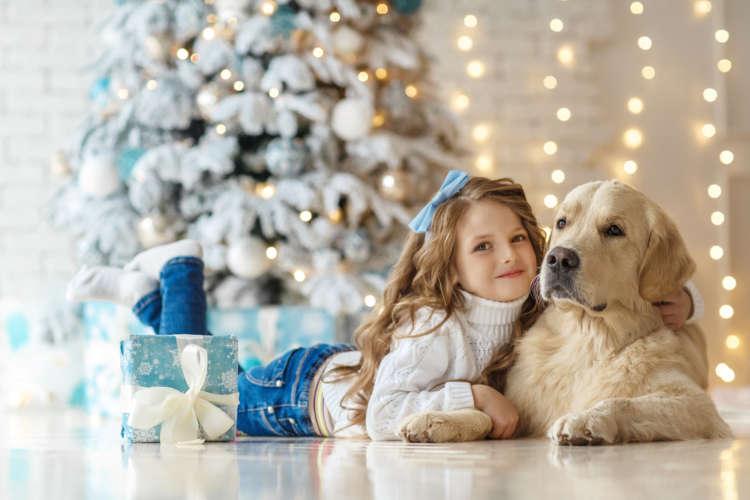 愛犬ともっと幸せな生活を! 飼い主さんの愛が伝わる、心も体も大満足のプレゼント