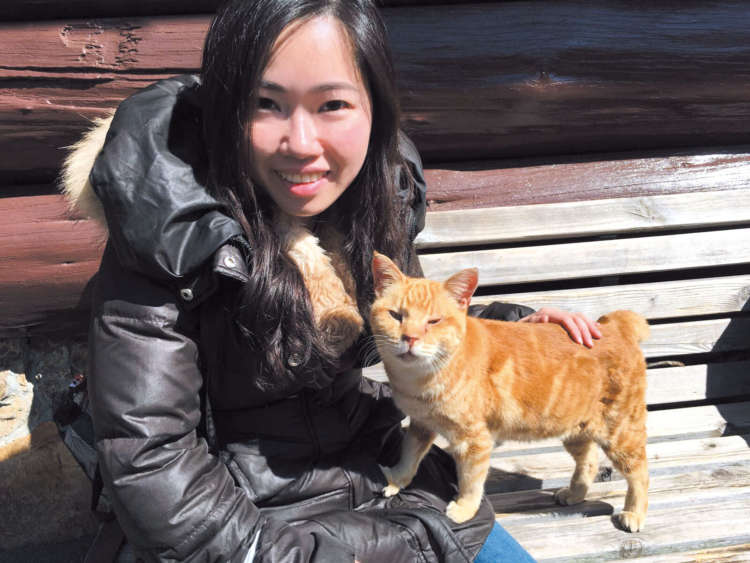 日本の野良猫は会話がしやすいそうだ