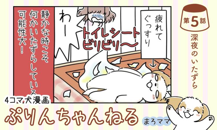 【まんが】第5話:【深夜のいたずら】描き下ろし漫画♪ 4コマ犬漫画「ぷりんちゃんねる」