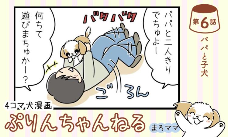 【まんが】第6話:【パパと子犬】描き下ろし漫画♪ 4コマ犬漫画「ぷりんちゃんねる」(著者:まろママ)