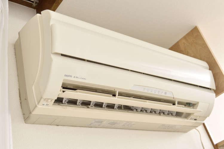 「猛暑、許さん!」=飼い主が外出する時も、エアコンはつけっぱなしで、家は冷え冷えと快適。お犬様様。