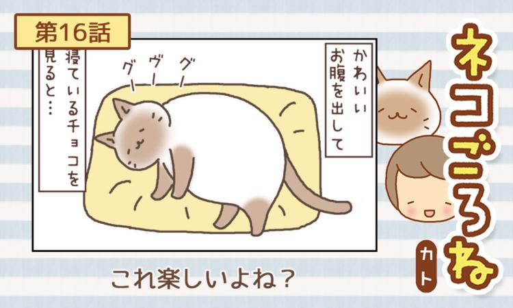 【まんが】第16話:【これ楽しいよね?】まんが描き下ろし連載♪ ネコごろね(著者:カト)