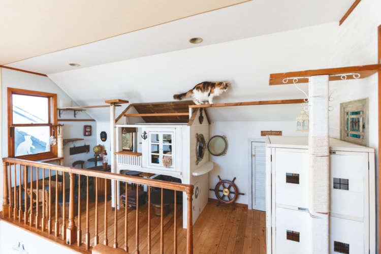 小さな空間が、港町の風情を感じさせる猫のためのカフェに!