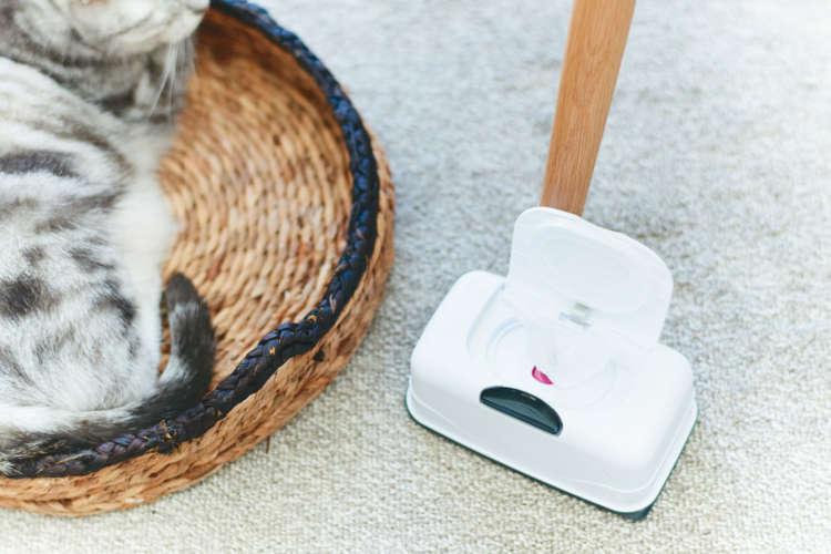 人にも猫にも使えるグッズを選ぶ