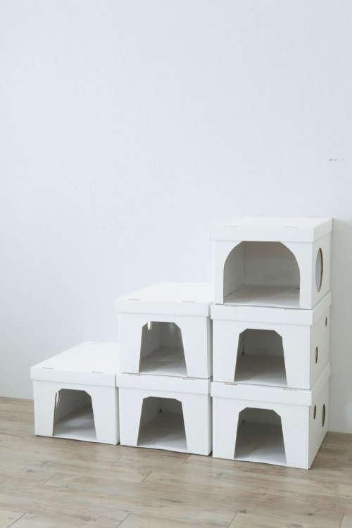 組み立てたいハウスの数だけ同様につくり、テープで接着する。