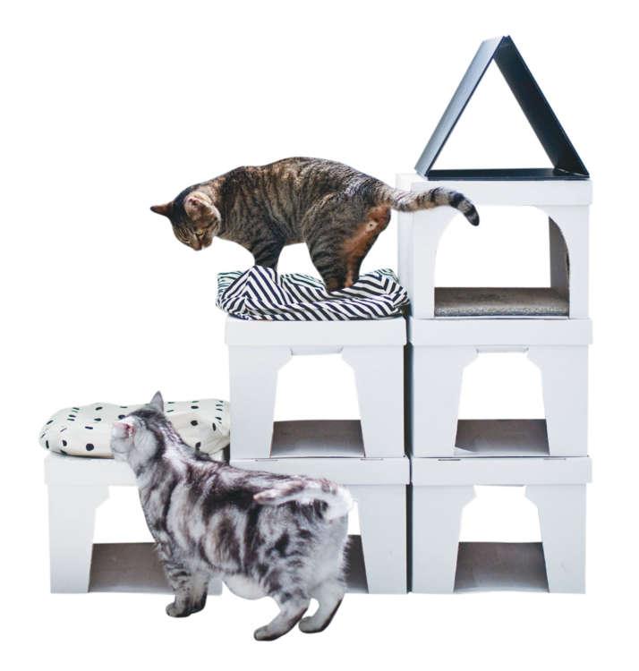 箱の底のサイズに合わせて、カットできるタイプのカーペットを中に入れたら、中で猫が気持ちよさそうに寝るようになりました。