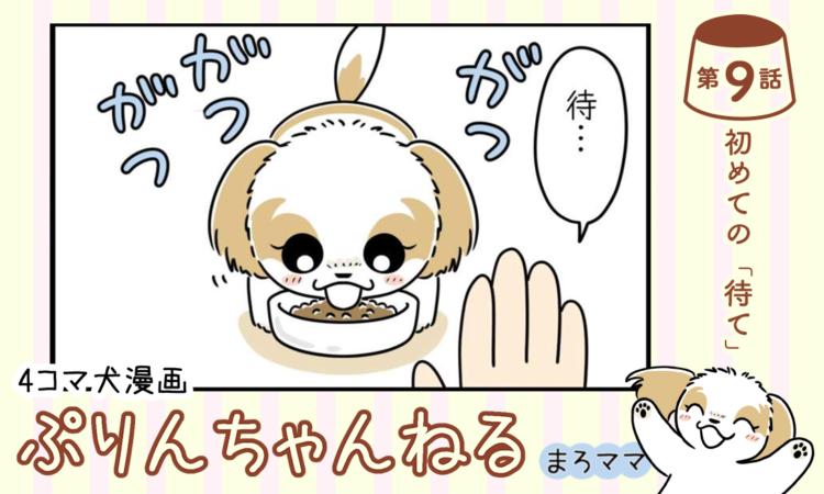 【まんが】第9話:【初めての「待て」】描き下ろし漫画♪ 4コマ犬漫画「ぷりんちゃんねる」