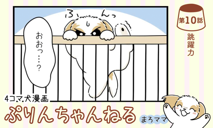 【まんが】第10話:【跳躍力】描き下ろし漫画♪ 4コマ犬漫画「ぷりんちゃんねる」(著者:まろママ)