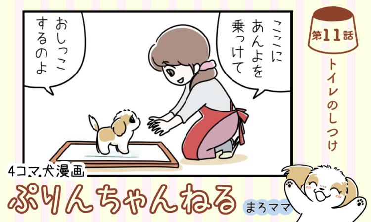 【まんが】第11話:【トイレのしつけ】描き下ろし漫画♪ 4コマ犬漫画「ぷりんちゃんねる」