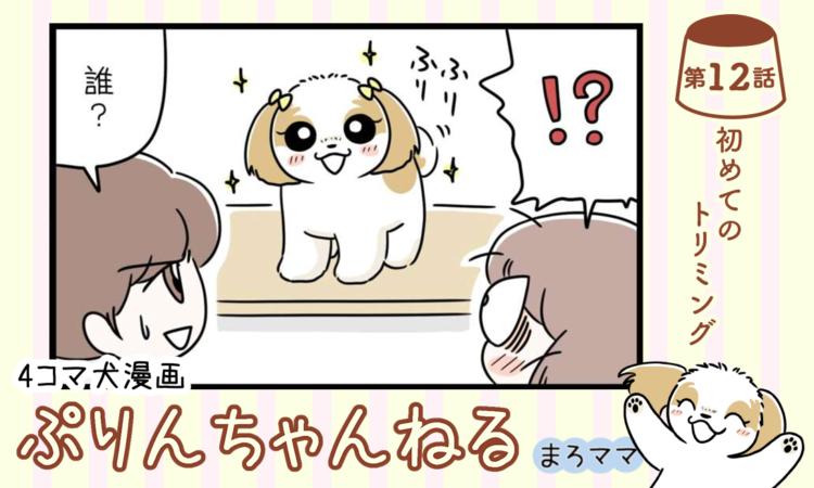 【まんが】第12話:【初めてのトリミング】描き下ろし漫画♪ 4コマ犬漫画「ぷりんちゃんねる」