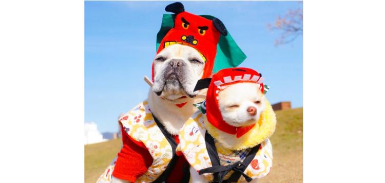【2018年は戌年だワン!】お正月をお祝いする、かわいいワンコたちが大集合(*´艸`*)♡