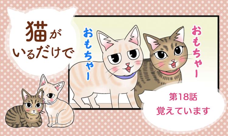 【まんが】第18話:【覚えています】まんが描き下ろし連載♪ 猫がいるだけで(著者:暁龍)