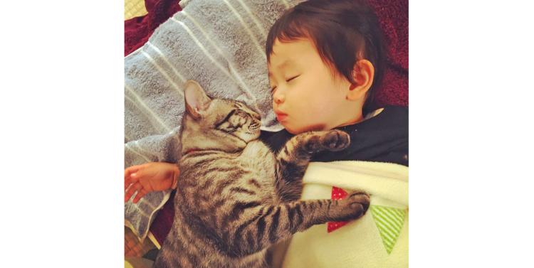 【出会った日から…♪】ピッタリ寄り添って眠る男の子とニャンコ。仲の良い姿にホッコリ♡