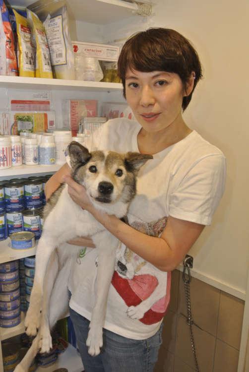 ミグノン代表、友森玲子さん。団体を立ち上げてからちょうど10年。「保護のおばさん」にならないよう、休日は意識して動物から離れるという。それでもキャパシティギリギリの活動が続き、今日も保護の最前線で走り回っている。