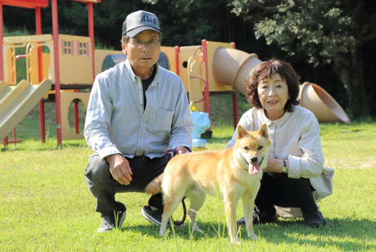 家の近くにある公園。コーちゃんがお気に入りの場所で、朝夕には犬友達も集まってくる。