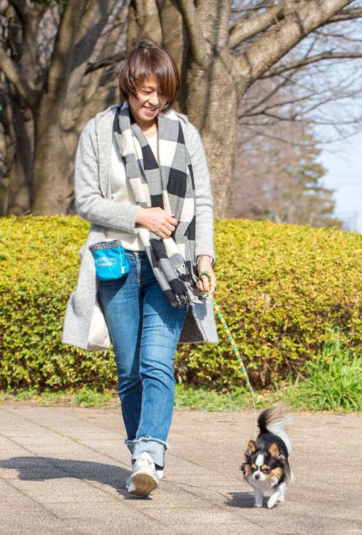 犬が歩き出し、周辺のにおいを嗅ぎ始めるはず。念のため拾い食いをしないように見守る。