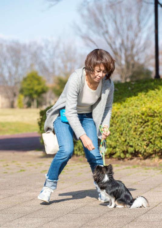 最初に下ろした場所の近くでアイコンタクトの練習をする。できたら犬に任せて周辺を歩く。