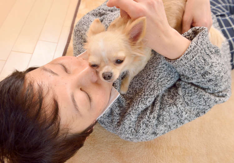 道子さんが寝転がると、足元からスタタと上ってきて胸のところに伏せたら、口元にほっぺたをくっつける。まりなりの好き好きアピールかも?