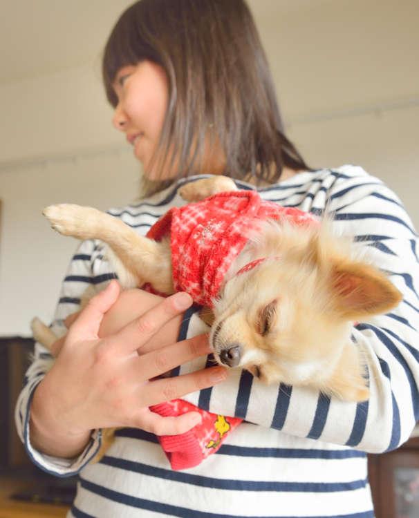 紗都子さんに抱っこされながら脱力状態。安心しきっている証拠。いつもは寝ている時間なのに今日は撮影でちょっぴりお疲れ気味なのかも。