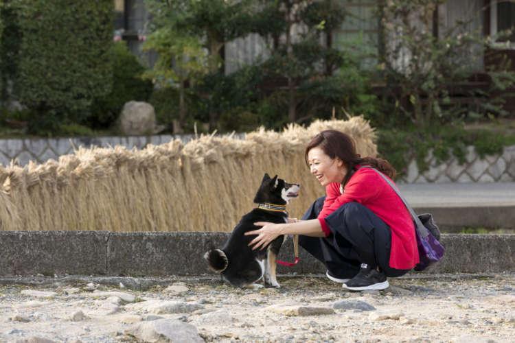 【あなたと愛犬、寄り添ってる!?】柴的共感の技術