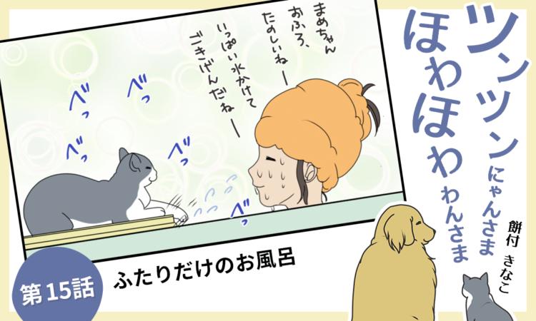 【まんが】第15話:【ふたりだけのお風呂】まんが描き下ろし連載♪ツンツンにゃんさま ほわほわわんさま
