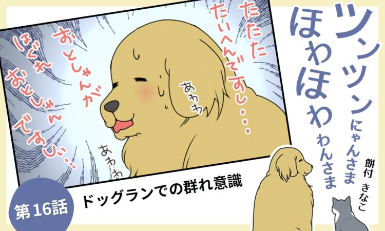 【まんが】第16話:【ドッグランでの群れ意識】まんが描き下ろし連載♪ ツンツンにゃんさま ほわほわわ