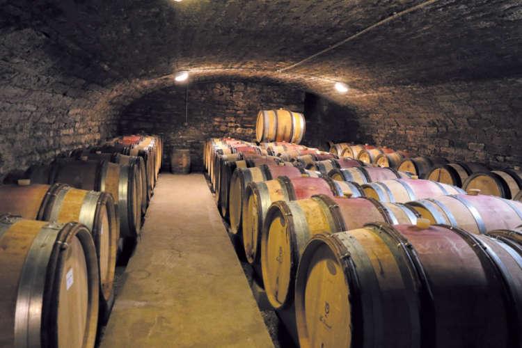 丹念に仕込まれたワインが眠るワイナリーの蔵