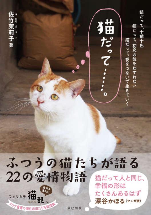 『猫だって……。』