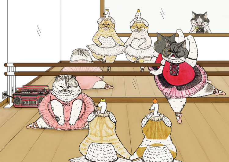 【この猫に会いたい!】世にも不思議な猫世界 KORIRI