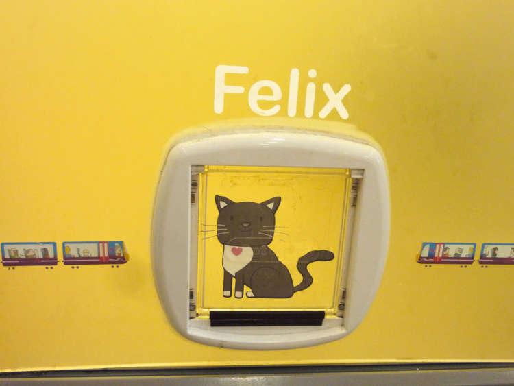専用の猫フラップ(猫扉)もあります