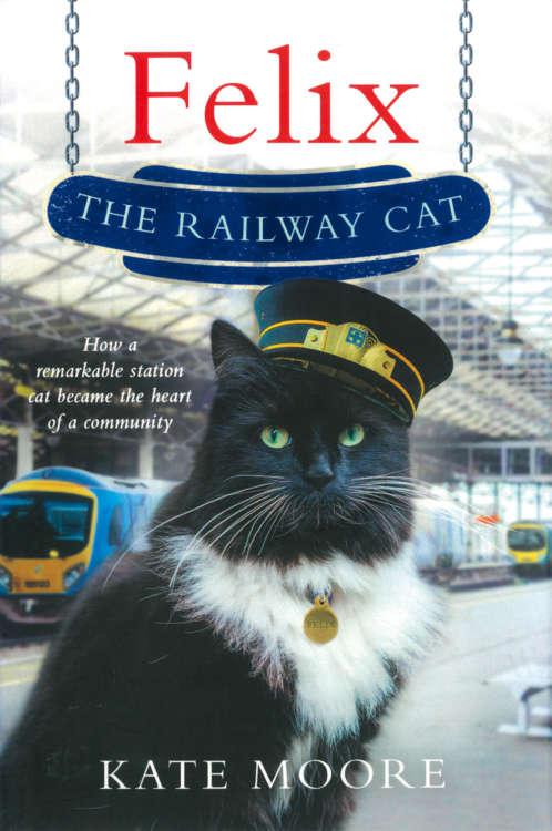 フェリックスの物語は、書籍化され英国の猫好きの間で大評判に